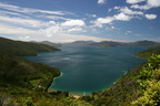 Marlborough Sounds 011